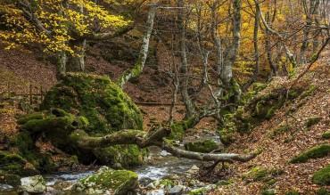 El turismo rural en León se consolida