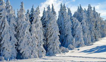 La nieve en León se hace esperar