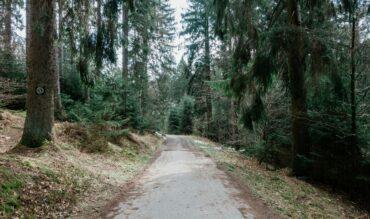 Disfruta de una ruta por la senda del Oro de El Bierzo